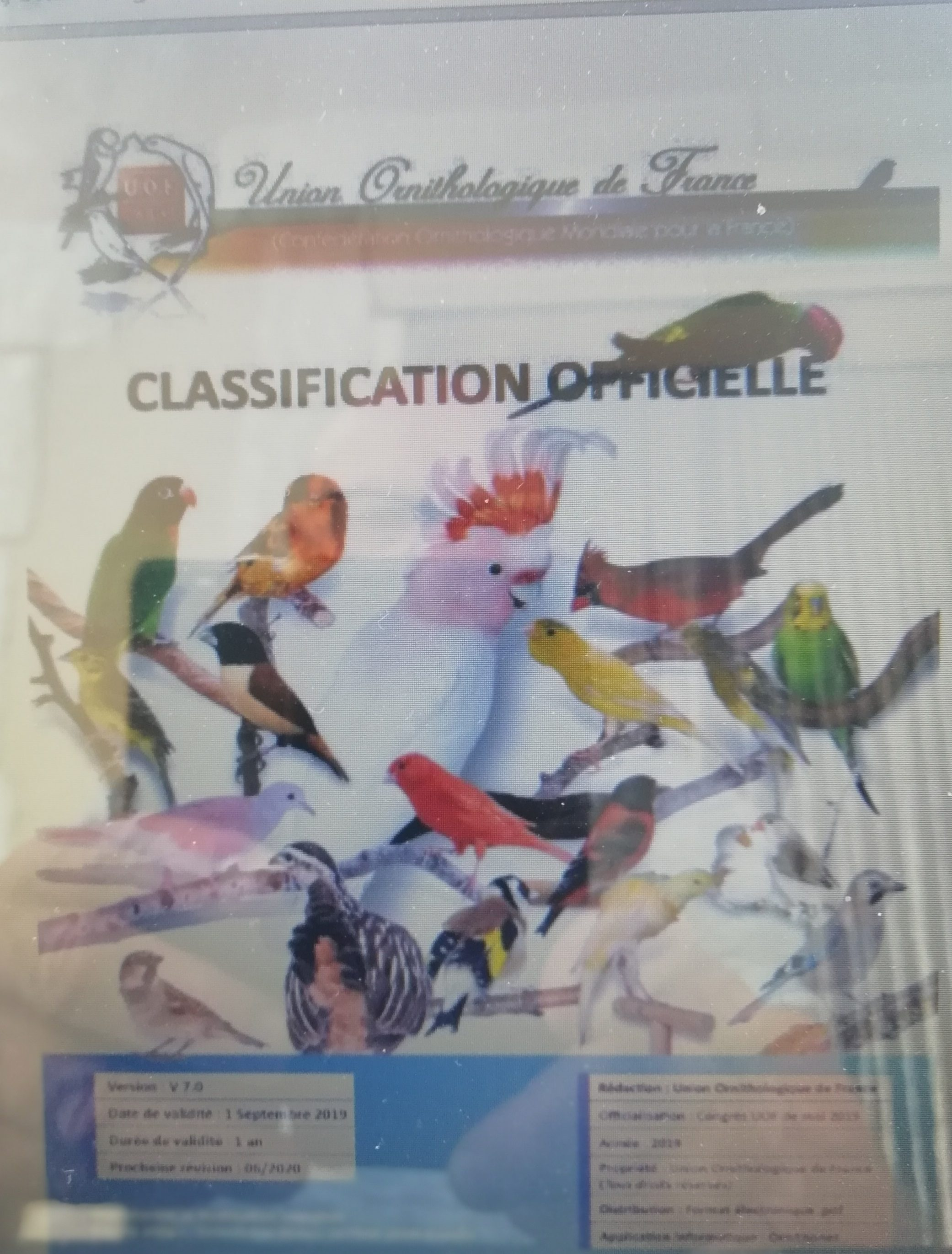UOF Classifications  2019-2020